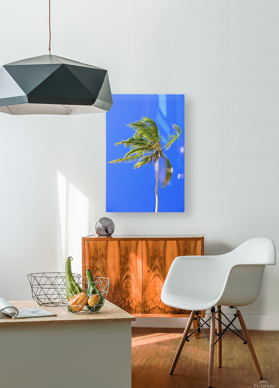 Palm Tree Against Clear Blue Sky  HD Metal print with Floating Frame on Back