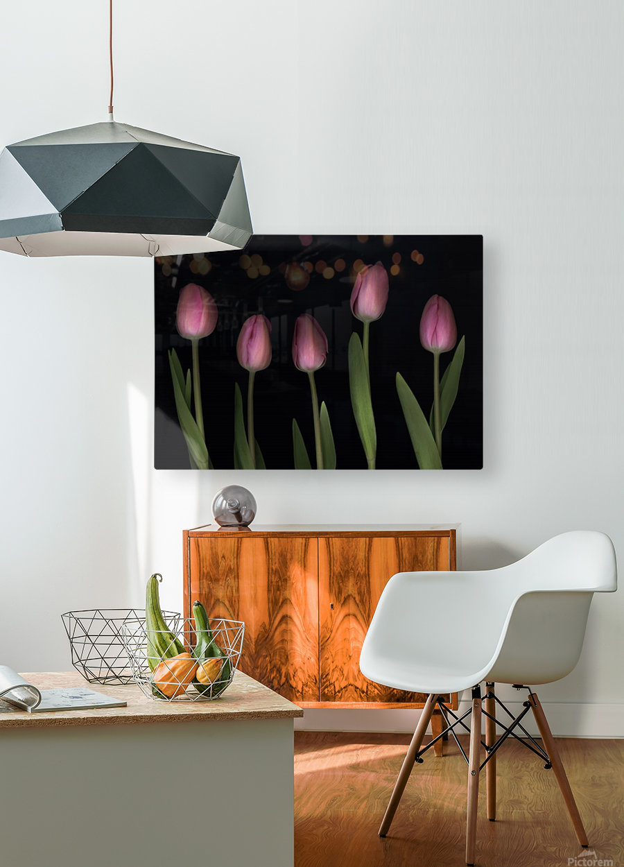 Pink Tulips  HD Metal print with Floating Frame on Back