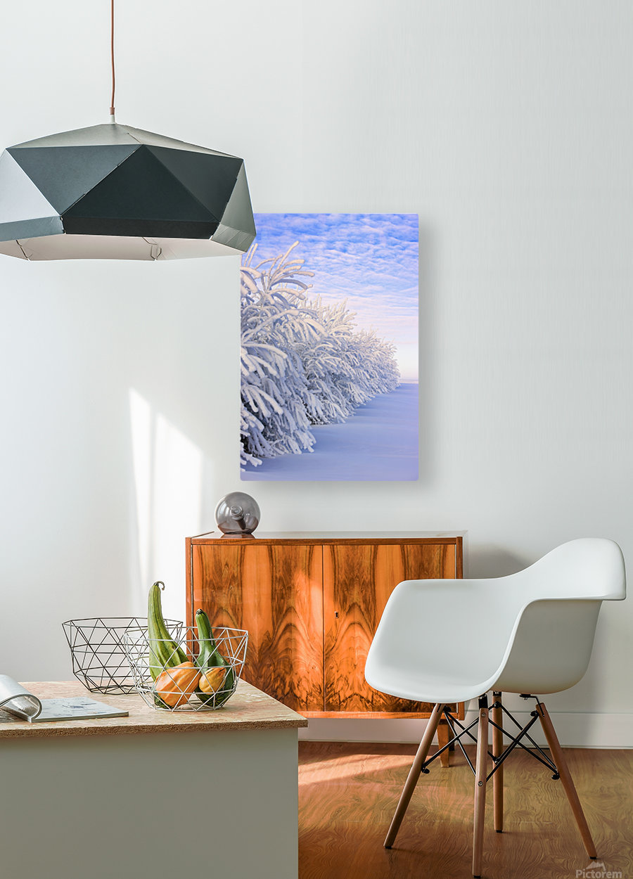 Covered In Snow  HD Metal print with Floating Frame on Back