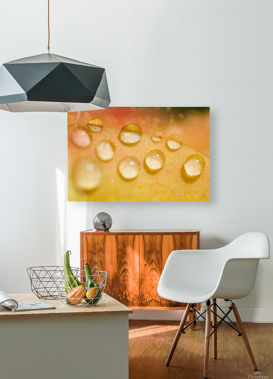 Water Droplets  HD Metal print with Floating Frame on Back