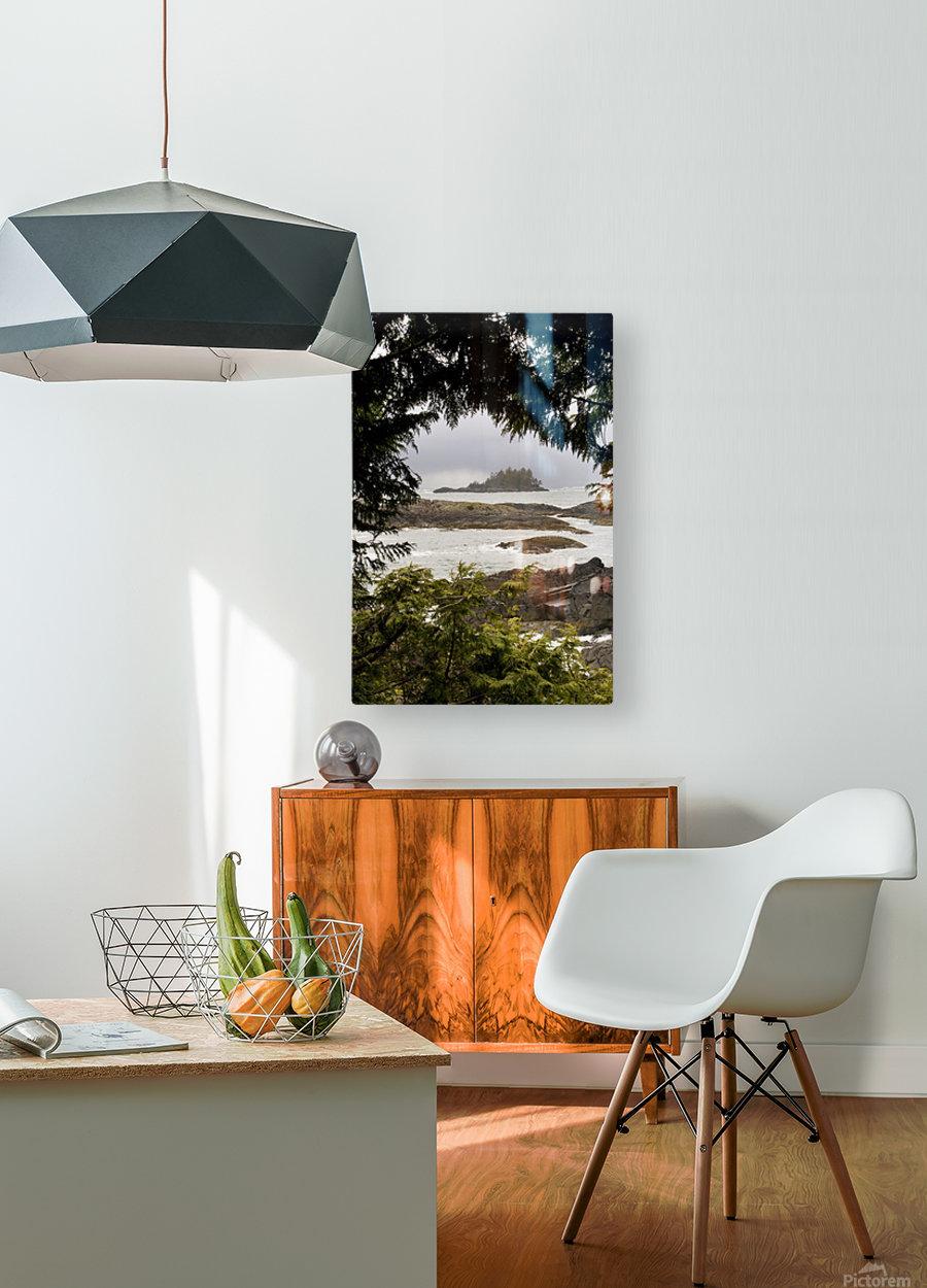 Coastal Scenery, Tofino, British Columbia, Canada  HD Metal print with Floating Frame on Back