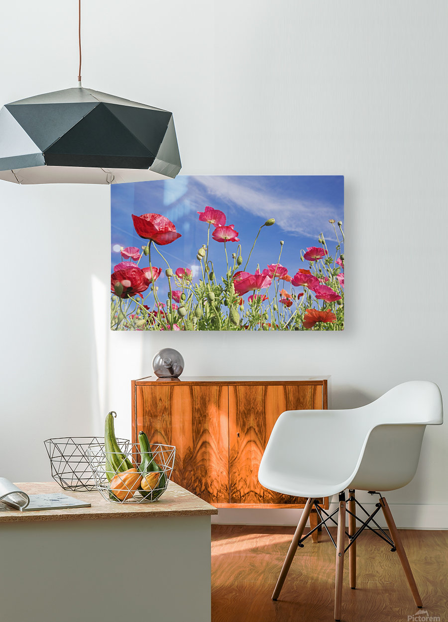 Red Flowers Against Blue Sky  HD Metal print with Floating Frame on Back