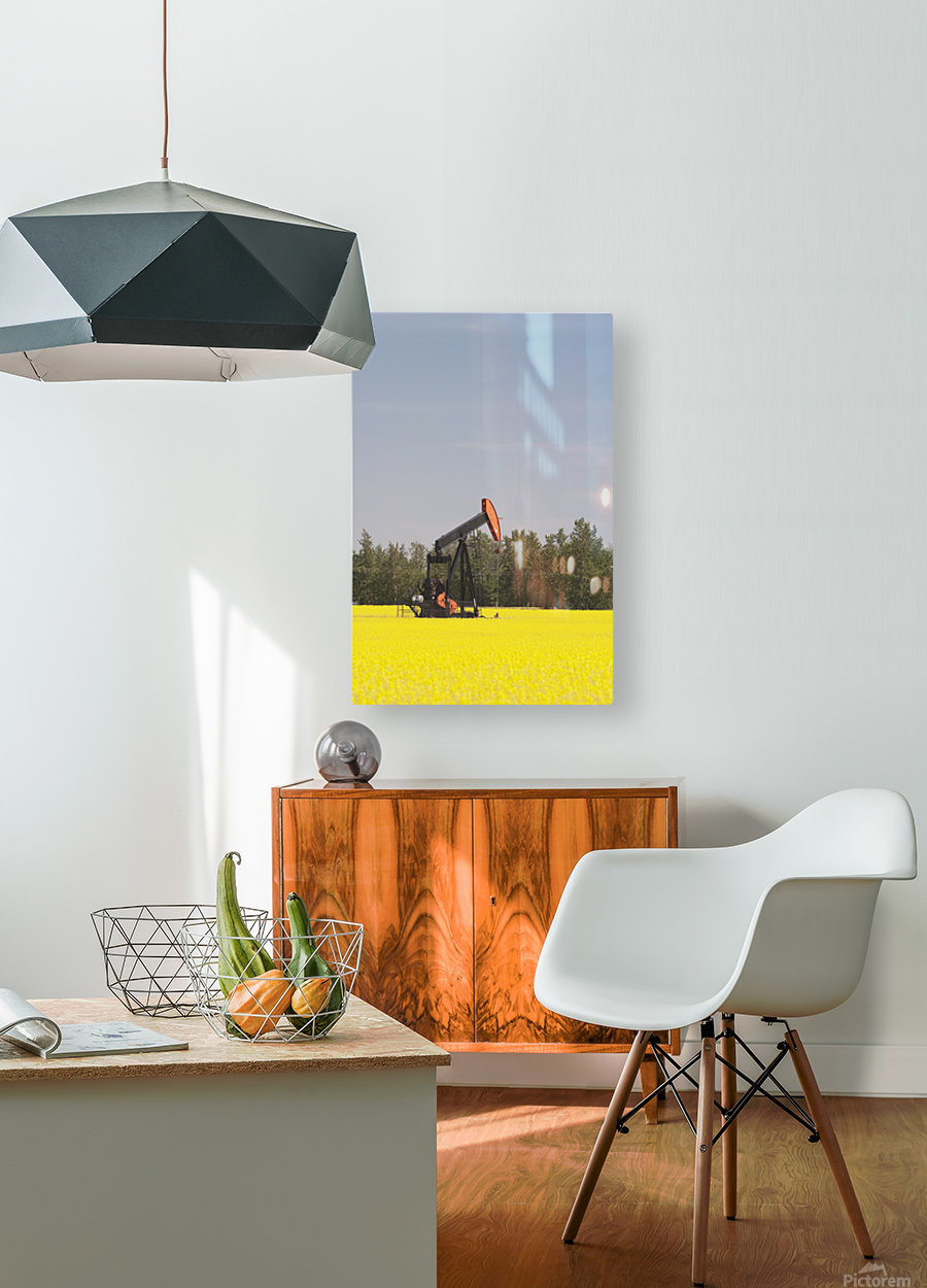 Alberta, Canada; Pump Jack In A Flowering Canola Field  HD Metal print with Floating Frame on Back
