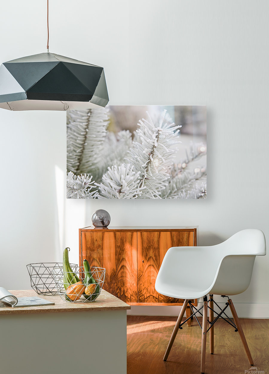 Frost On Pine Tree  HD Metal print with Floating Frame on Back