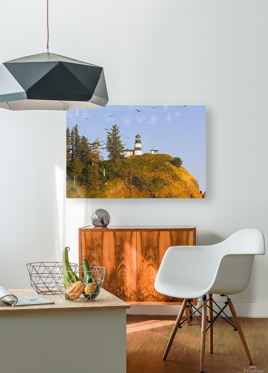 Birds In Flight Over Cape Disappointment Lighthouse; Ilwaco, Washington, United States of America  HD Metal print with Floating Frame on Back