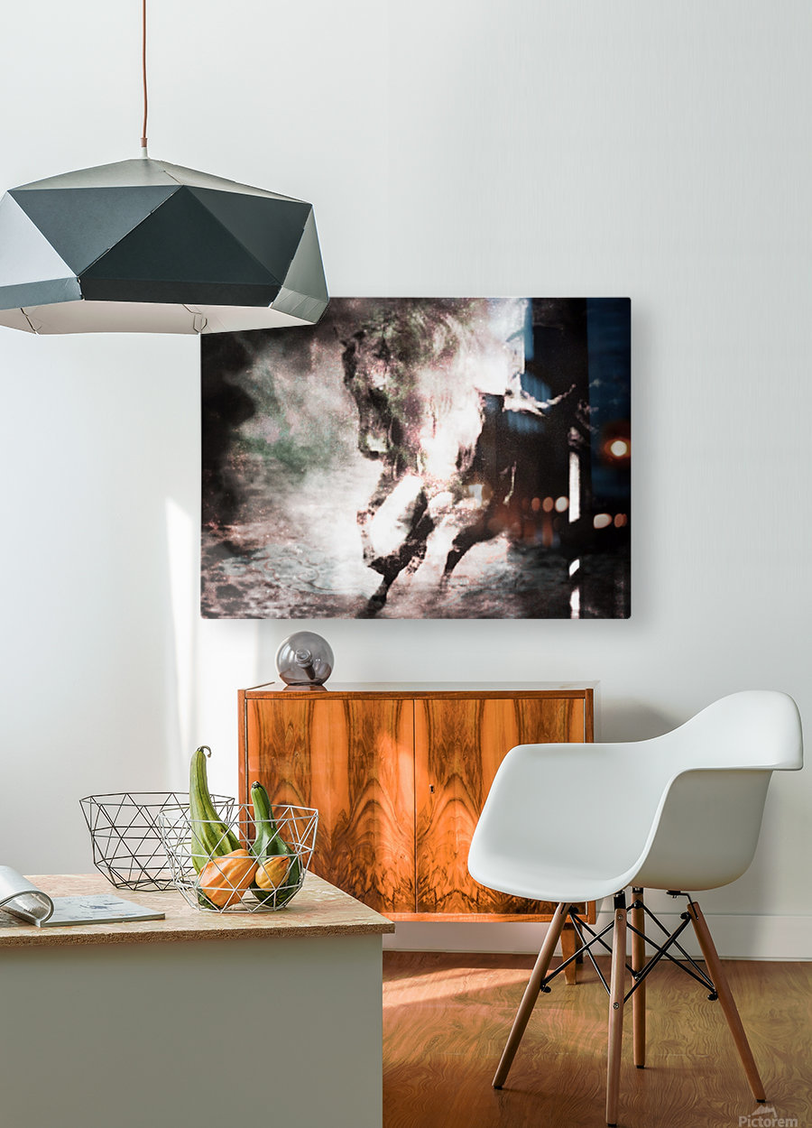 his only friend  HD Metal print with Floating Frame on Back