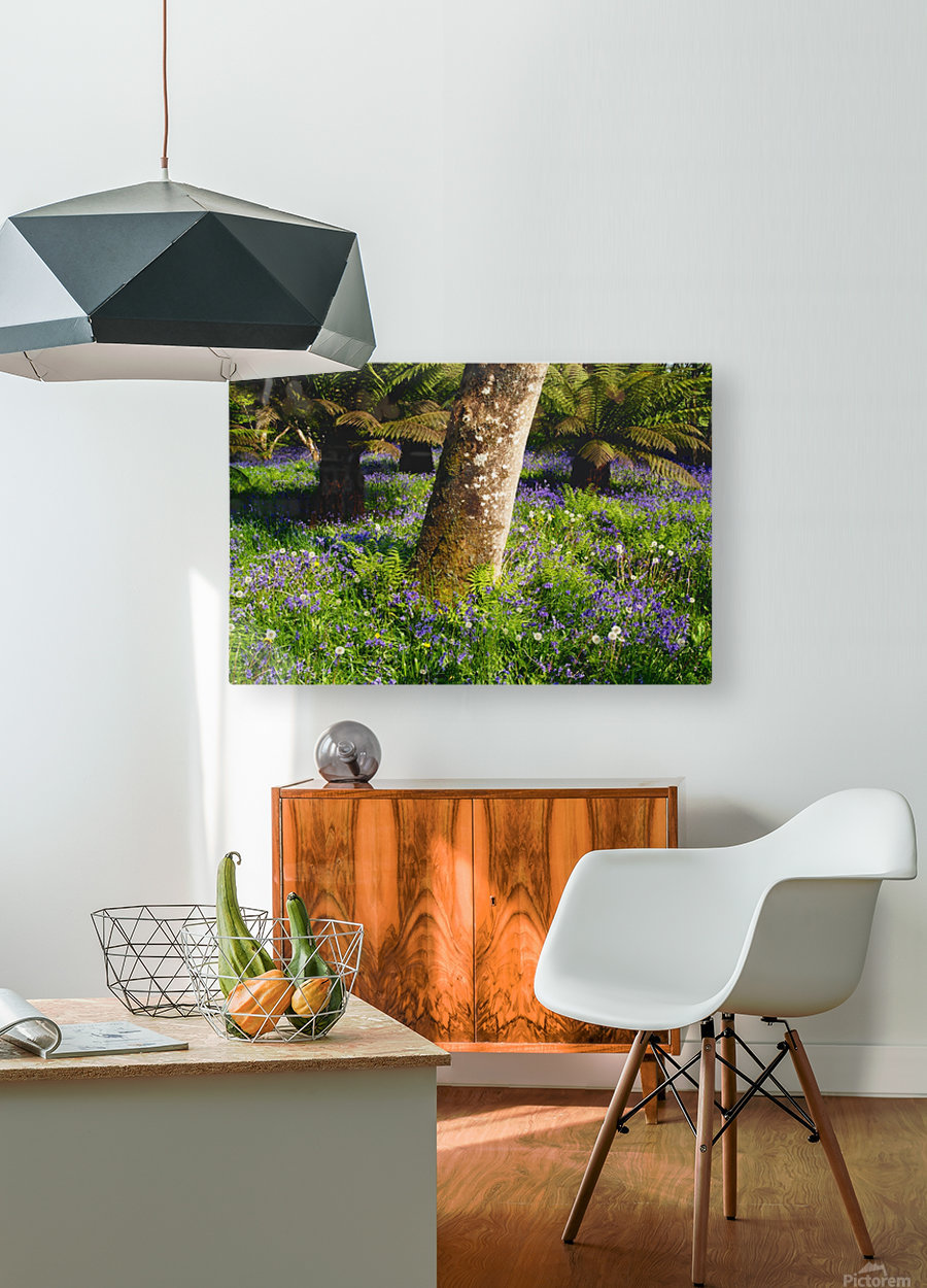 Mount Congreve Gardens; County Waterford, Ireland  HD Metal print with Floating Frame on Back