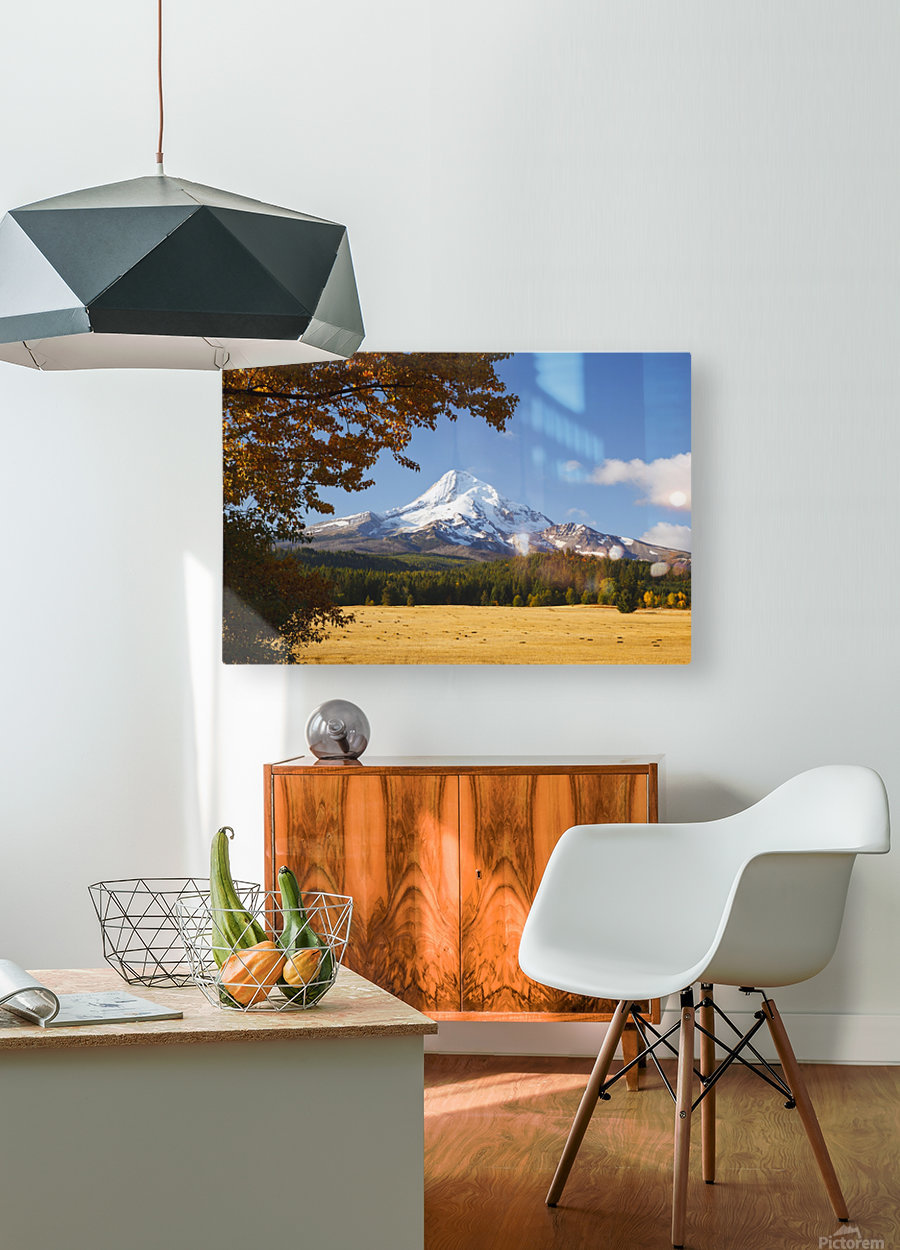 Mount Hood And Autumn Colours In Hood River Valley; Oregon, United States of America  HD Metal print with Floating Frame on Back