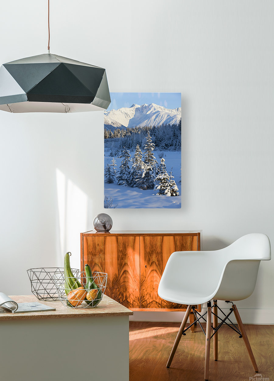Scenic View Of Chugach Mountains And Snowcovered Landscape, Southcentral Alaska, Winter  HD Metal print with Floating Frame on Back