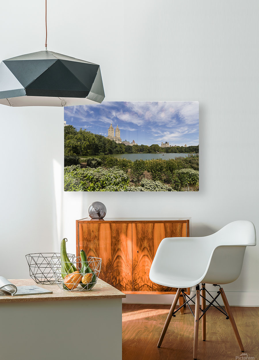 The Lake in Central Park, New York City, New York, United States  HD Metal print with Floating Frame on Back