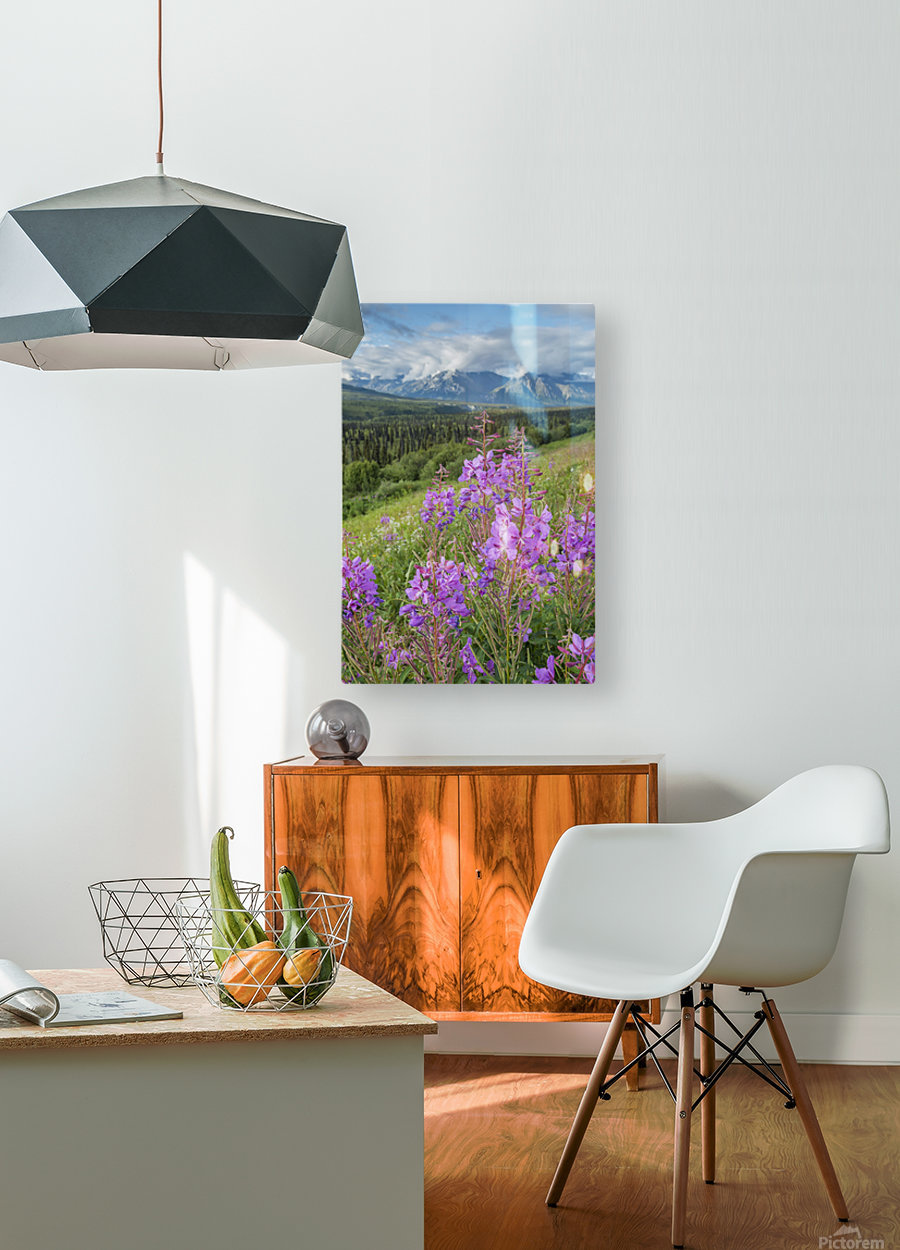 Scenic view of landscape near Palmer, Alaska, with Fireweed (Epilobium angustifolium) in the foreground, Southcentral Alaska, summer  HD Metal print with Floating Frame on Back
