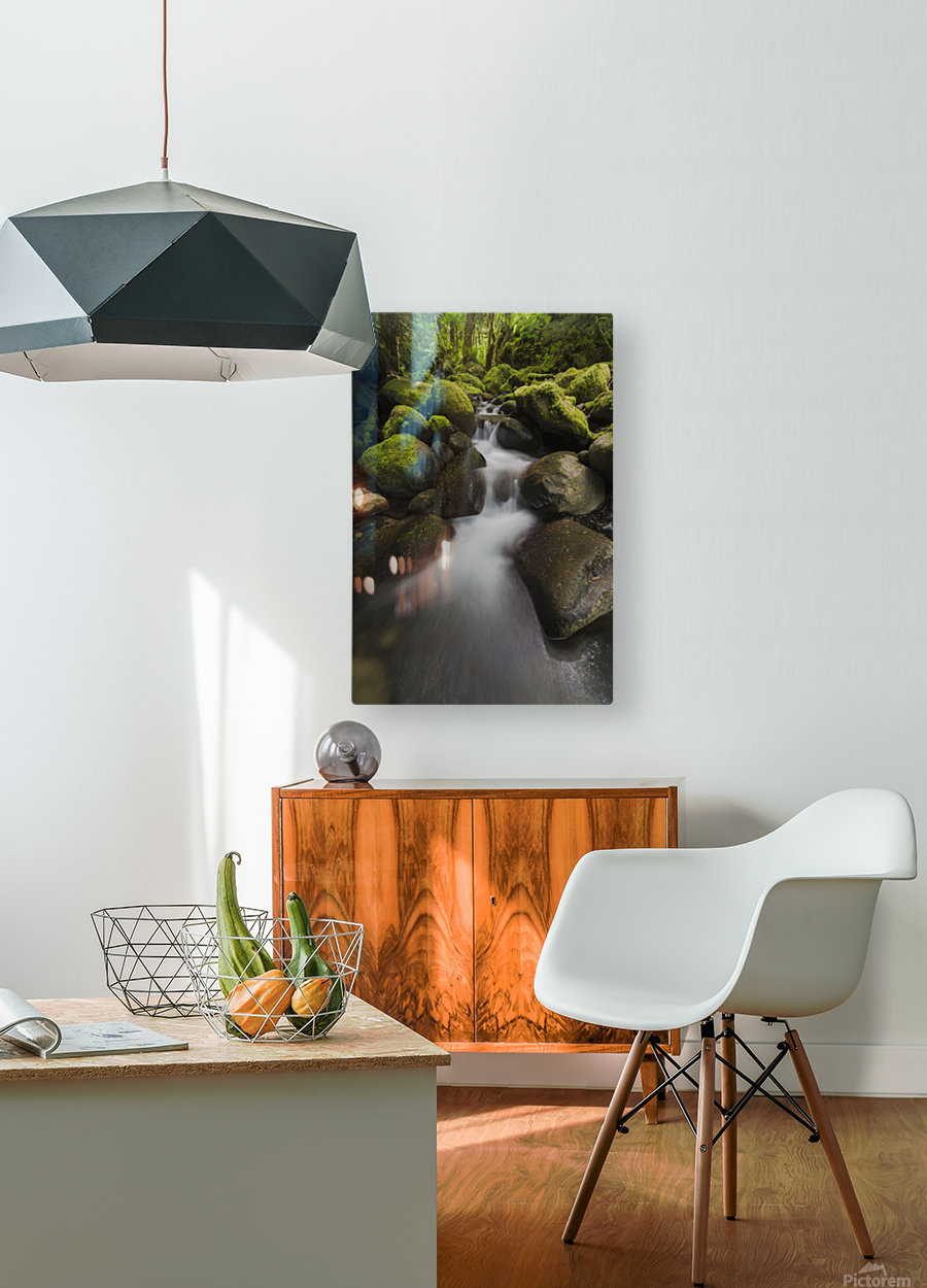 Ruckel Creek; Oregon, United States of America  HD Metal print with Floating Frame on Back