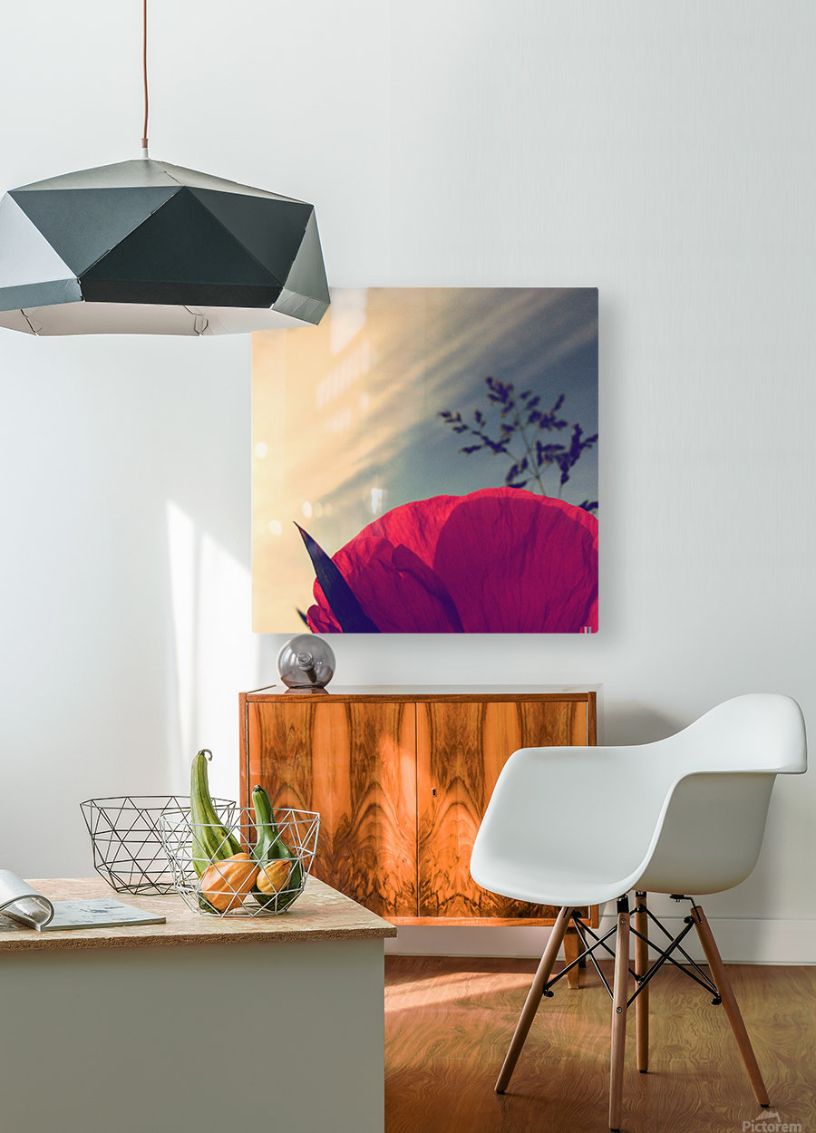 Poppy sky  HD Metal print with Floating Frame on Back