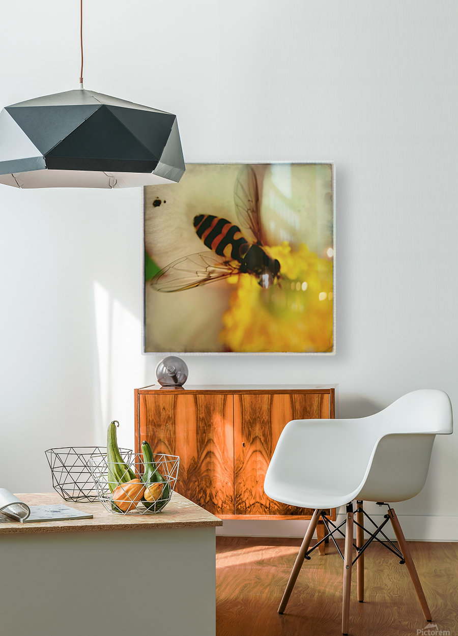 Bee-ing  HD Metal print with Floating Frame on Back