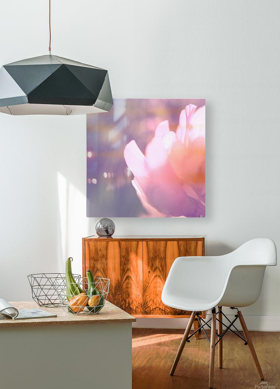 Rödklöver  HD Metal print with Floating Frame on Back