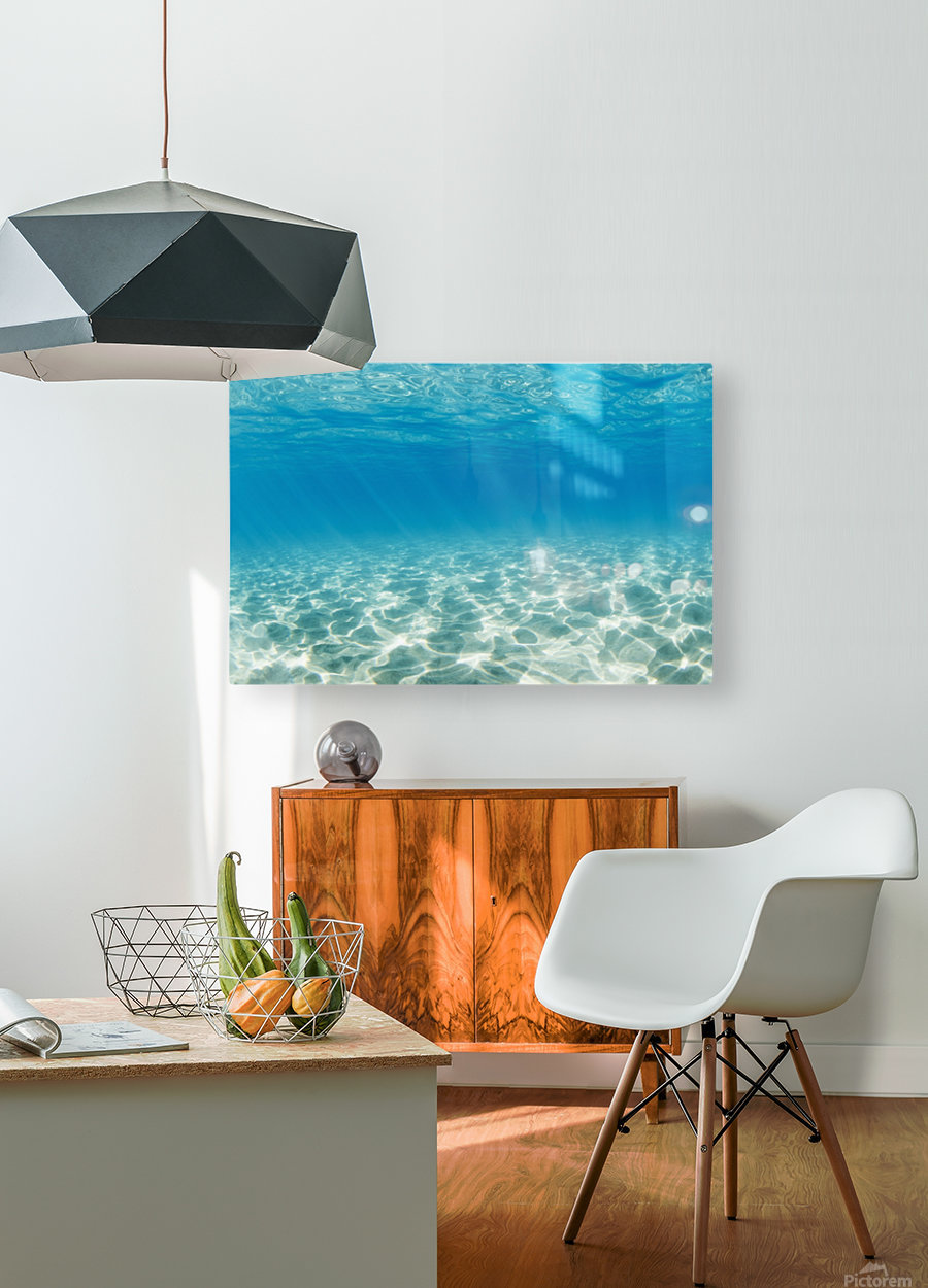 Underwater  HD Metal print with Floating Frame on Back