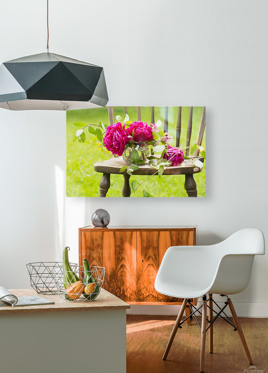 Fresh pink peonies picked and lying on a wooden chair; New Westminster, British Columbia, Canada  HD Metal print with Floating Frame on Back
