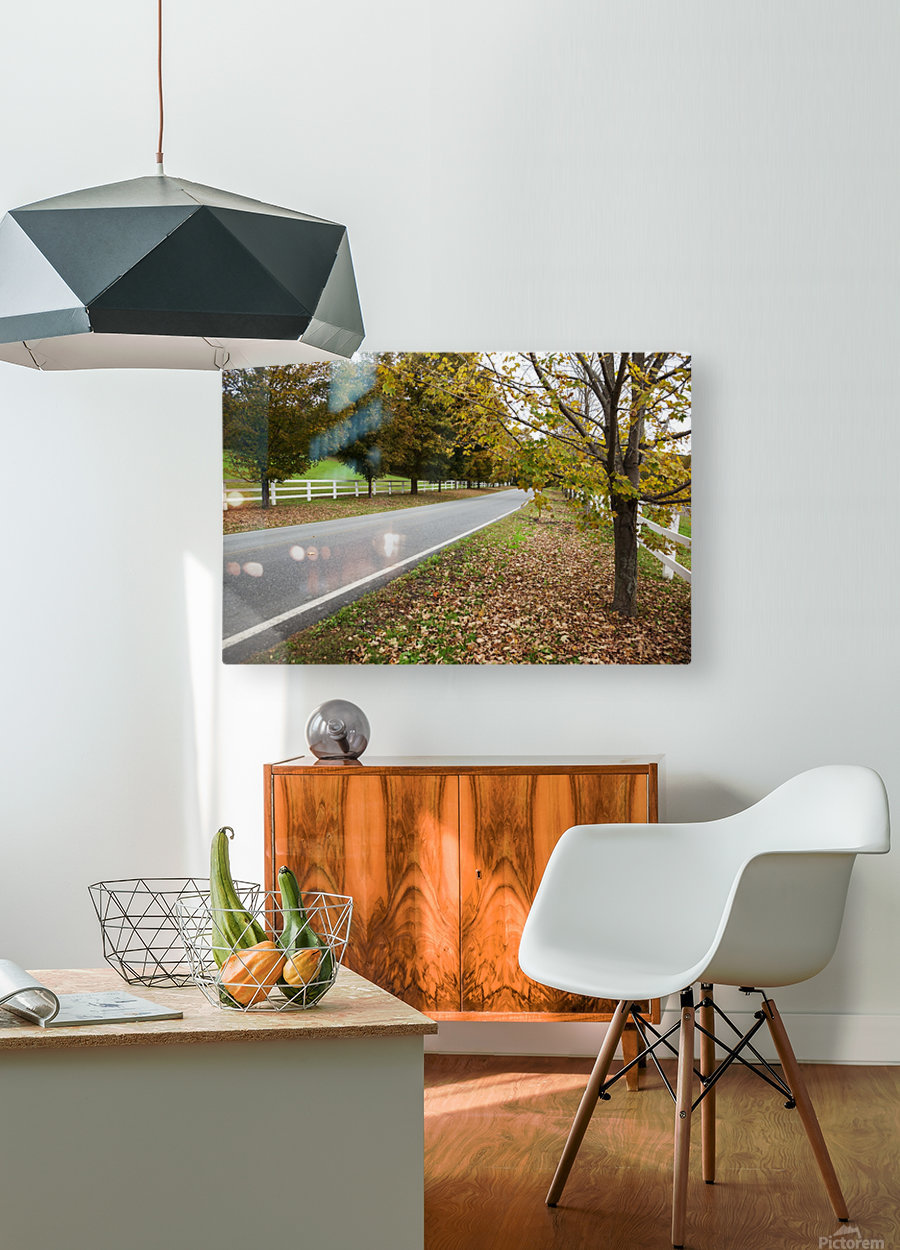 Scenic farm road in autumn; Woodstock, Vermont, United States of America  HD Metal print with Floating Frame on Back