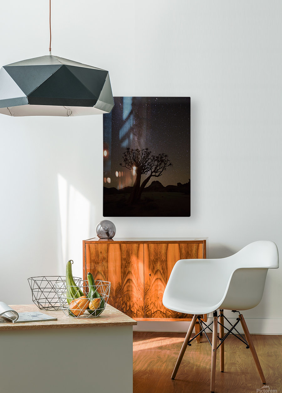 The milky way slashes across the night sky above a quiver tree (kokerboom, aloe dichotoma) in Richtersveld National Park; South Africa  HD Metal print with Floating Frame on Back