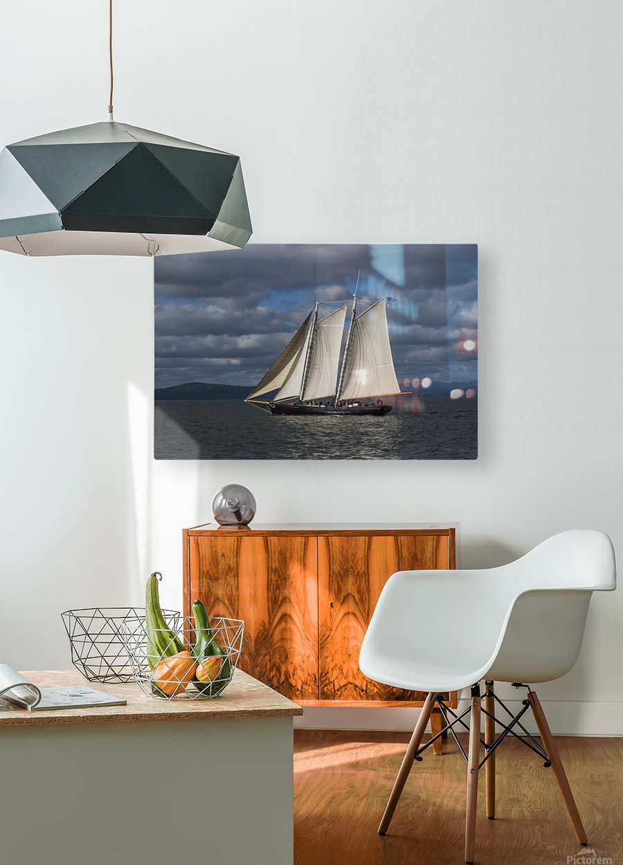 A large sailboat sails down the Columbia River; Astoria, Oregon, United States of America  HD Metal print with Floating Frame on Back