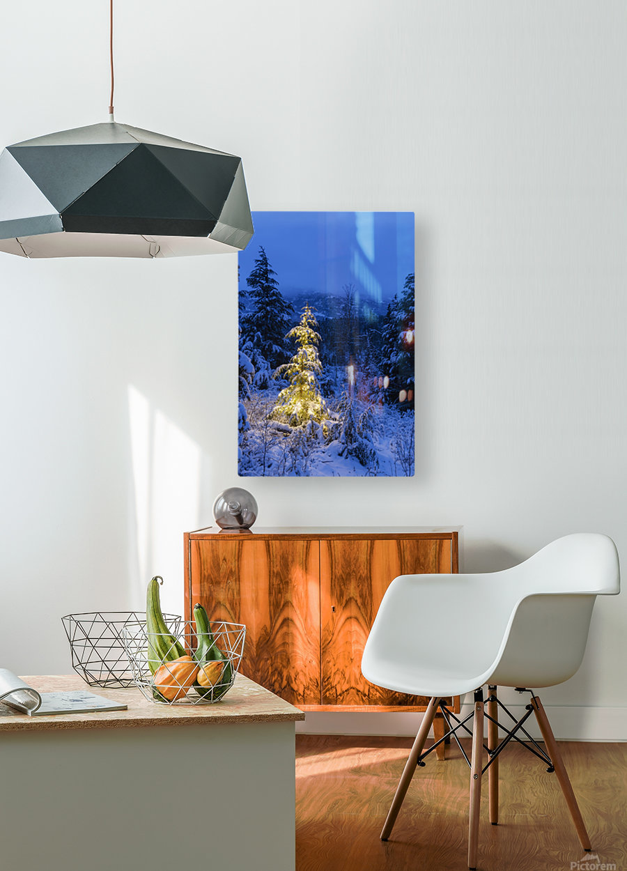 A festive Mountain Hemlock evergreen tree strung with white lights and covered in snow in a wintery landscape, Kenai Mountains; Moose Pass, Alaska, United States of America  HD Metal print with Floating Frame on Back