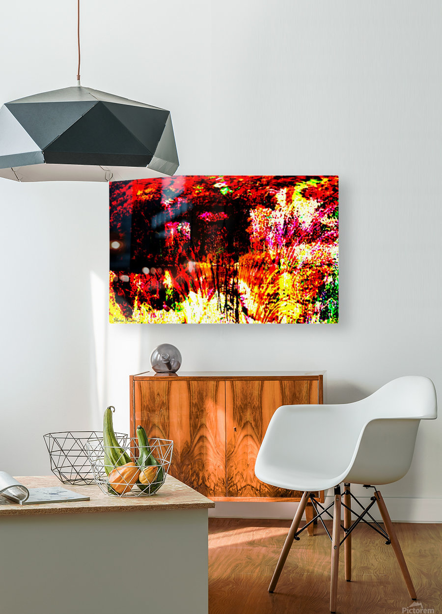 A Colorful Scene   HD Metal print with Floating Frame on Back