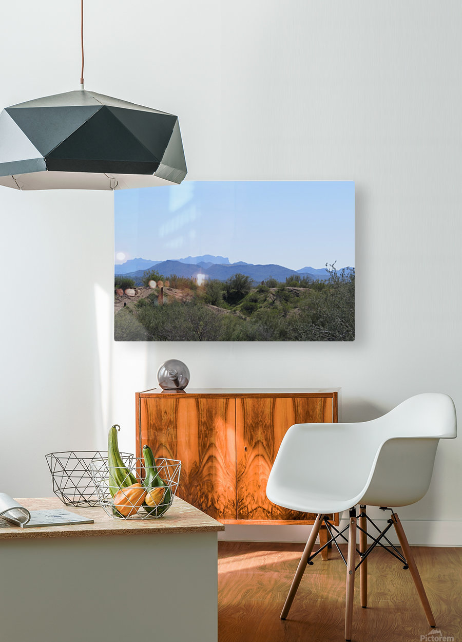 Tonto National Forest 1VP  HD Metal print with Floating Frame on Back