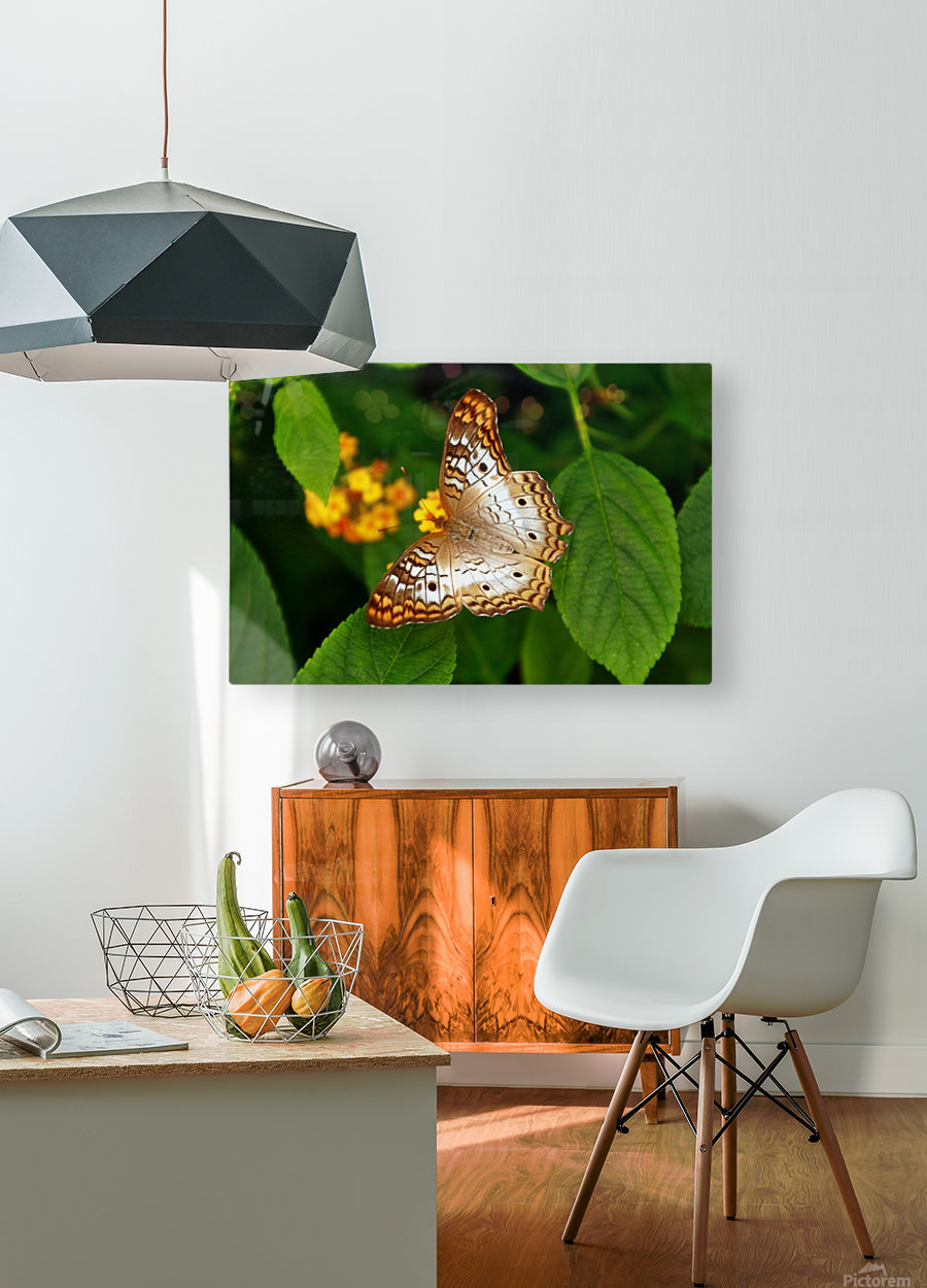 BPS-0015  HD Metal print with Floating Frame on Back