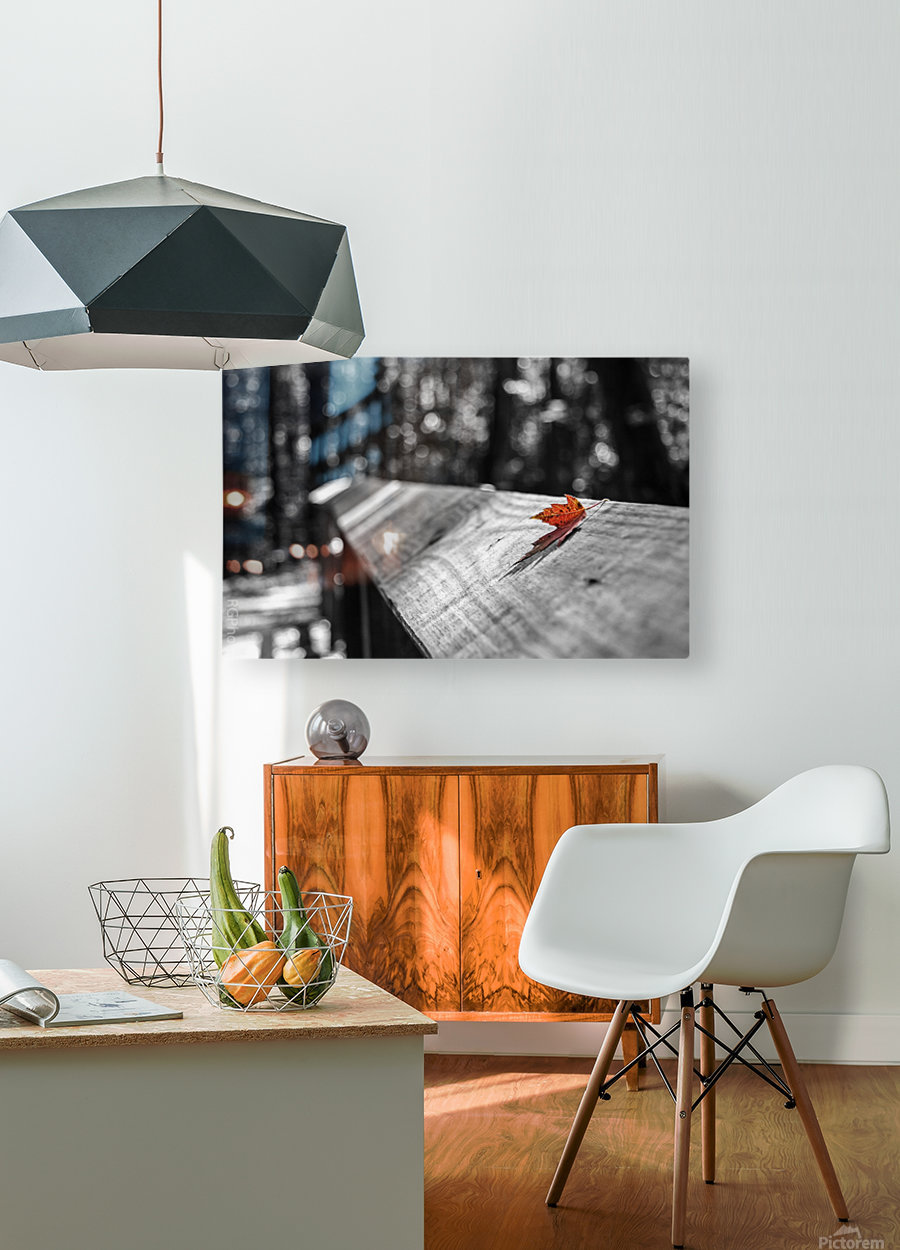 Holding On  HD Metal print with Floating Frame on Back