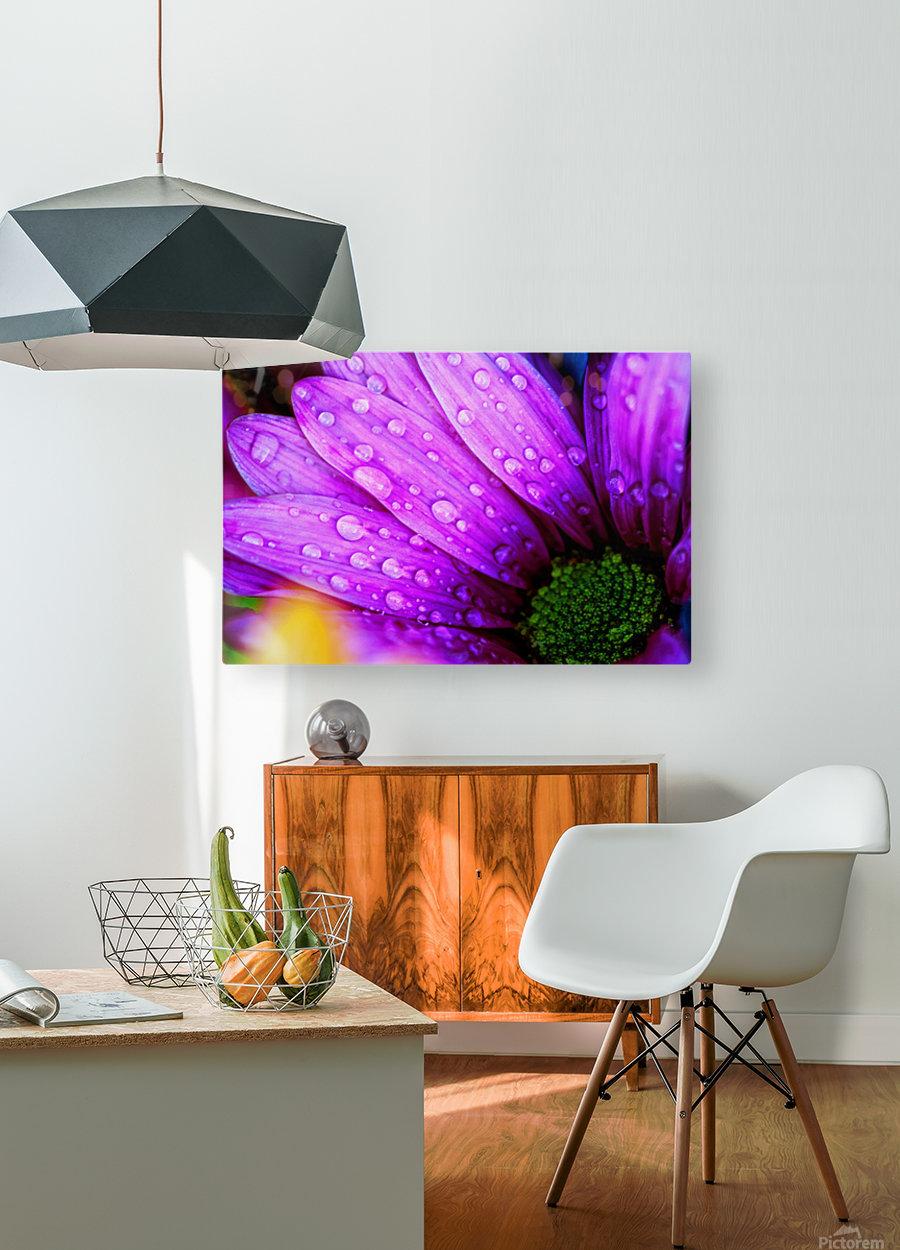 FPS-0068  HD Metal print with Floating Frame on Back