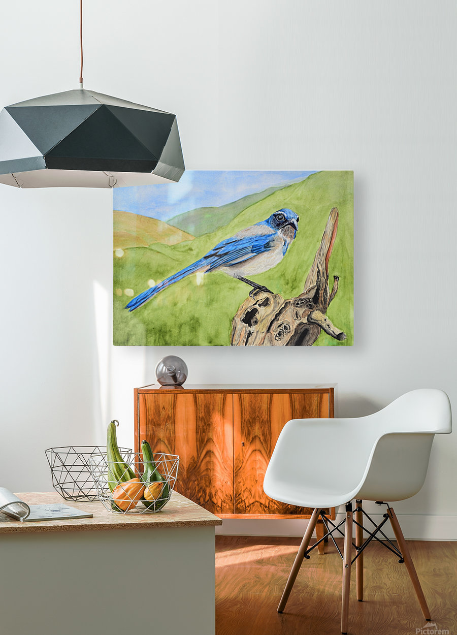 Blue Scrub Jay On Dead Tree  HD Metal print with Floating Frame on Back