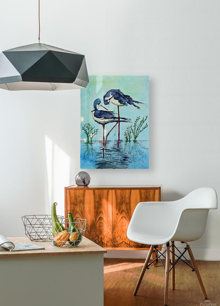 Stilts Bathing   HD Metal print with Floating Frame on Back