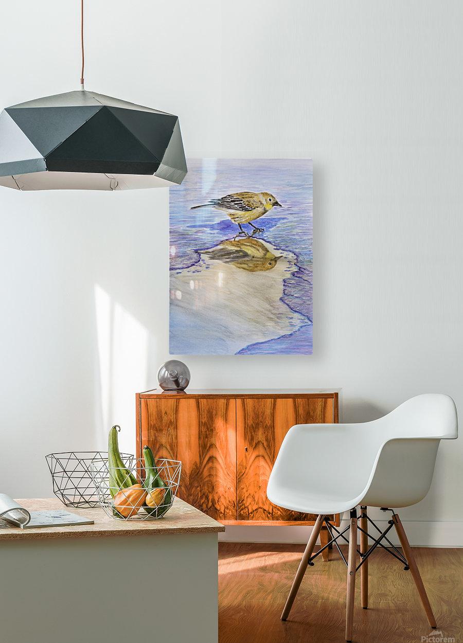Warbler Reflection  HD Metal print with Floating Frame on Back