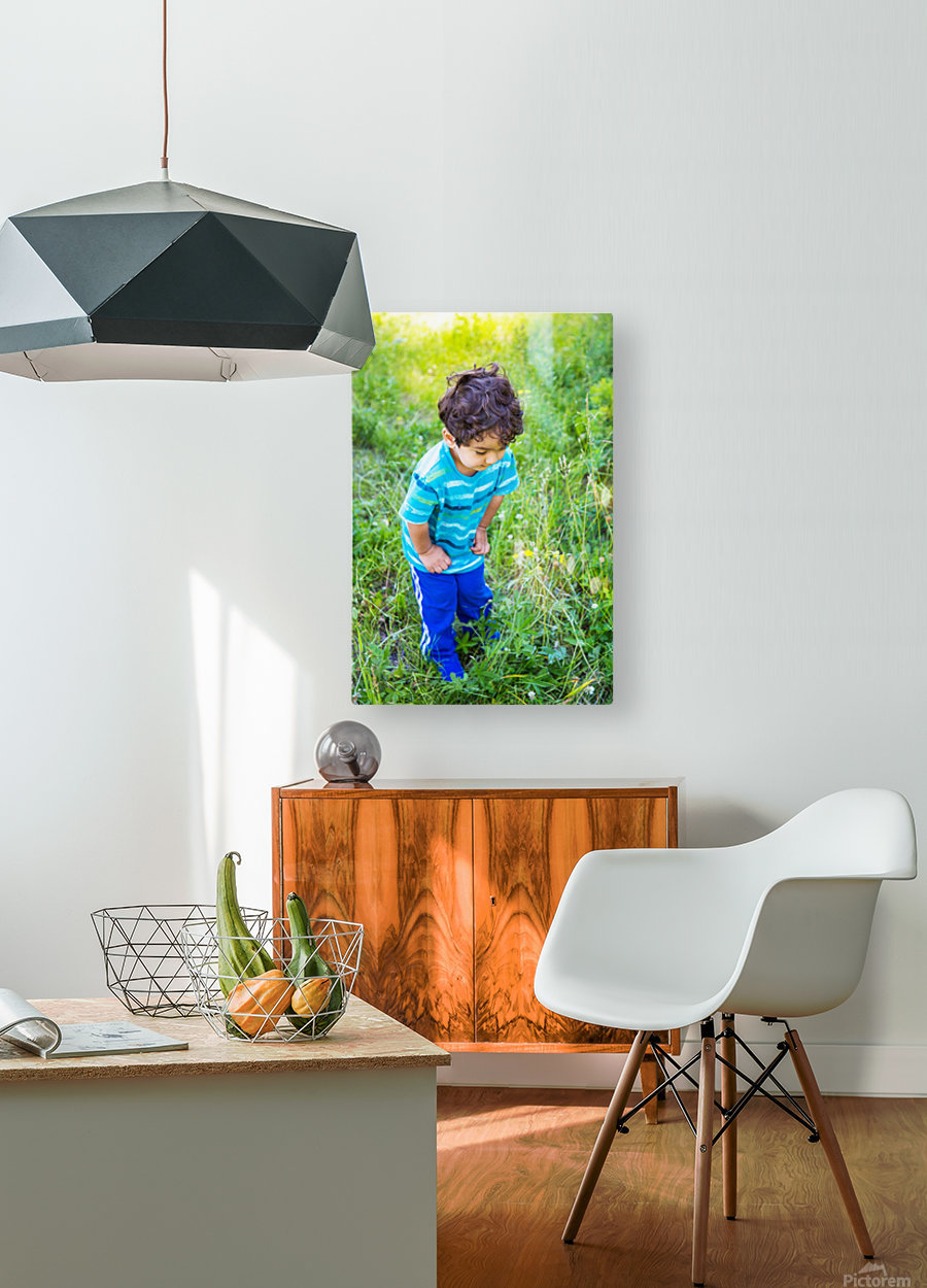 A World of Wonders  HD Metal print with Floating Frame on Back