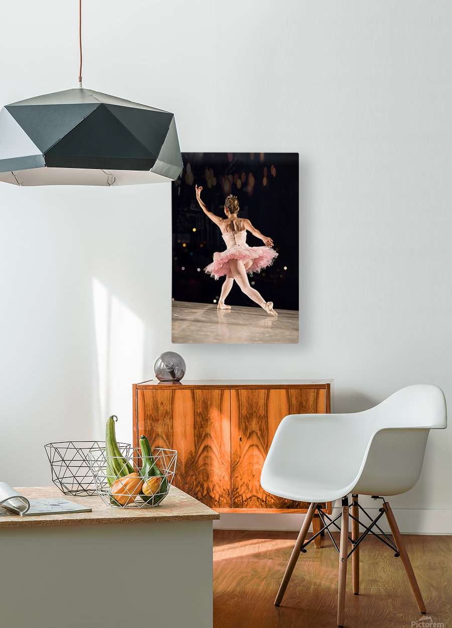 Ballerina 1  HD Metal print with Floating Frame on Back