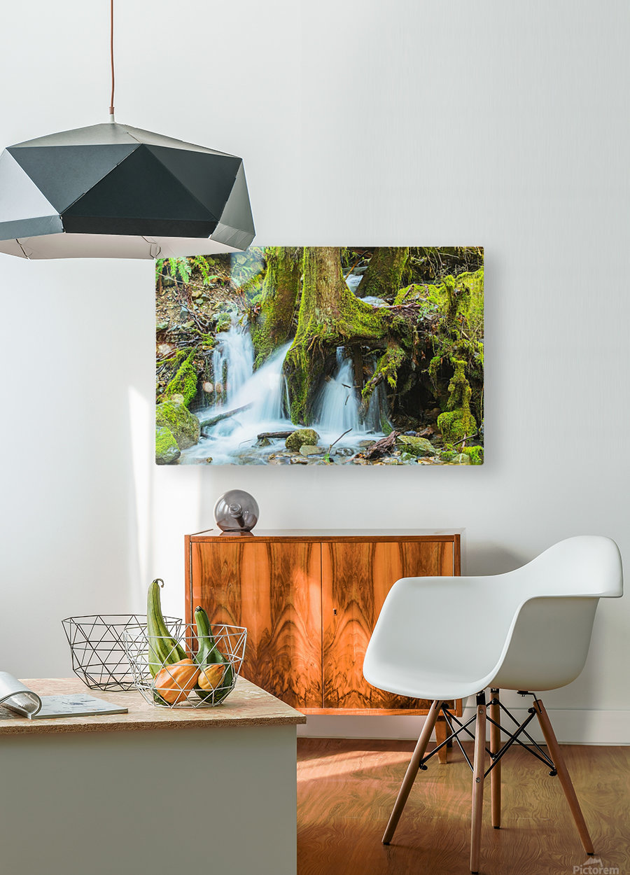 Rain Forest Cascade  HD Metal print with Floating Frame on Back