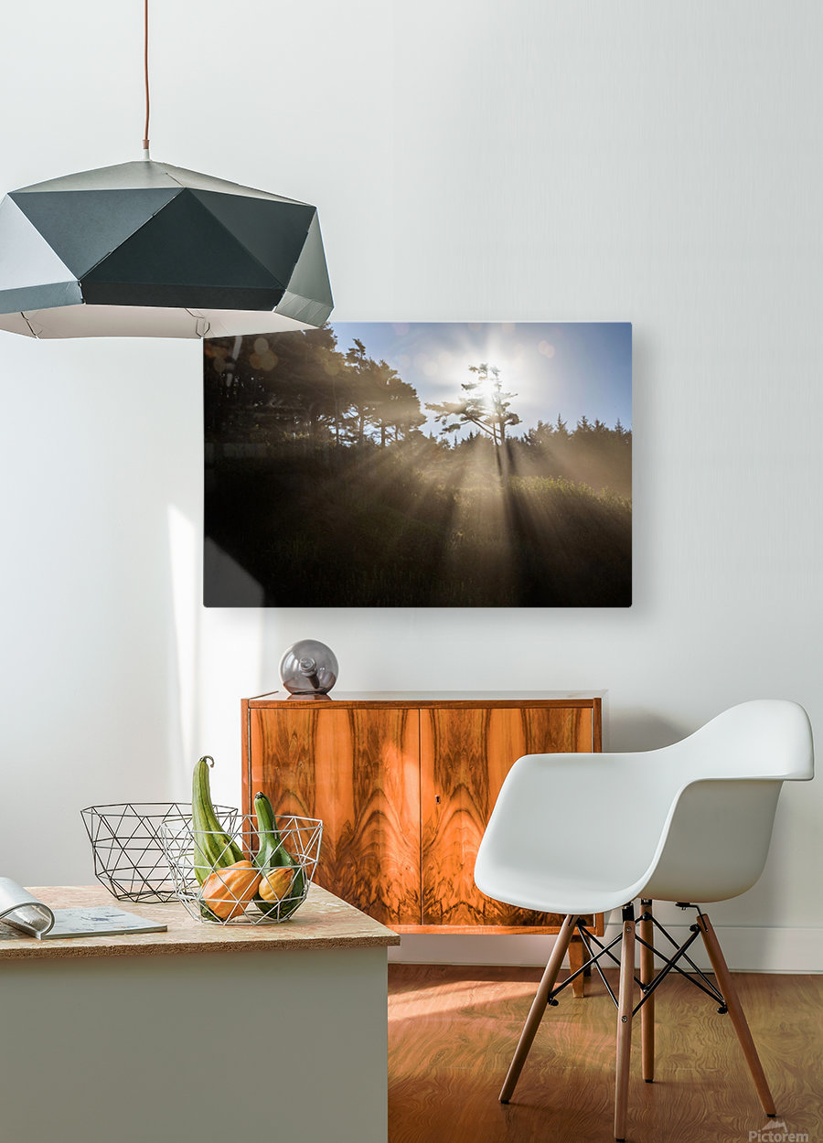 Sun Rays  HD Metal print with Floating Frame on Back