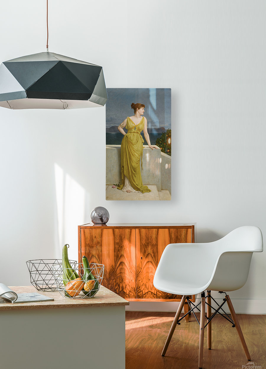 Mrs Kettlewell  HD Metal print with Floating Frame on Back