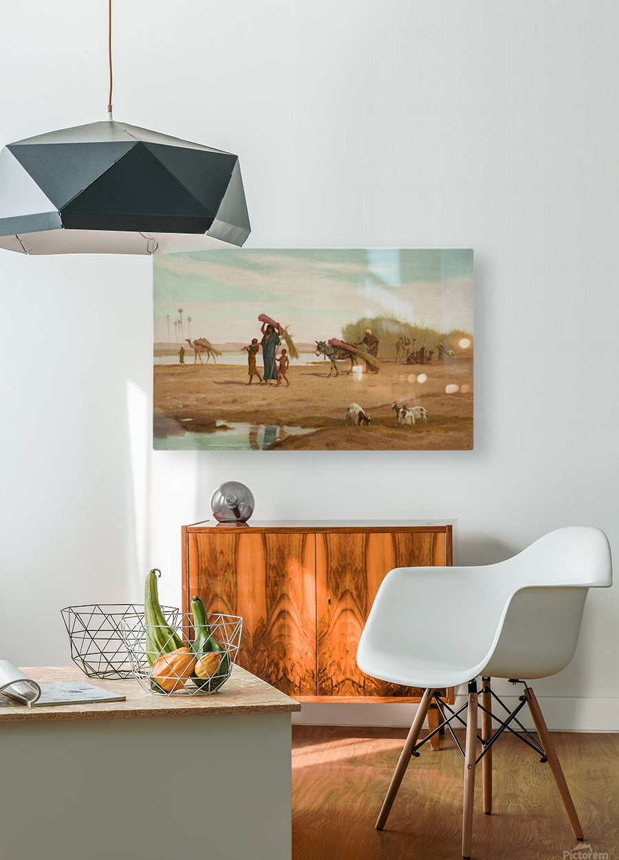 Getting in the Sugar Cane, River Nile  HD Metal print with Floating Frame on Back