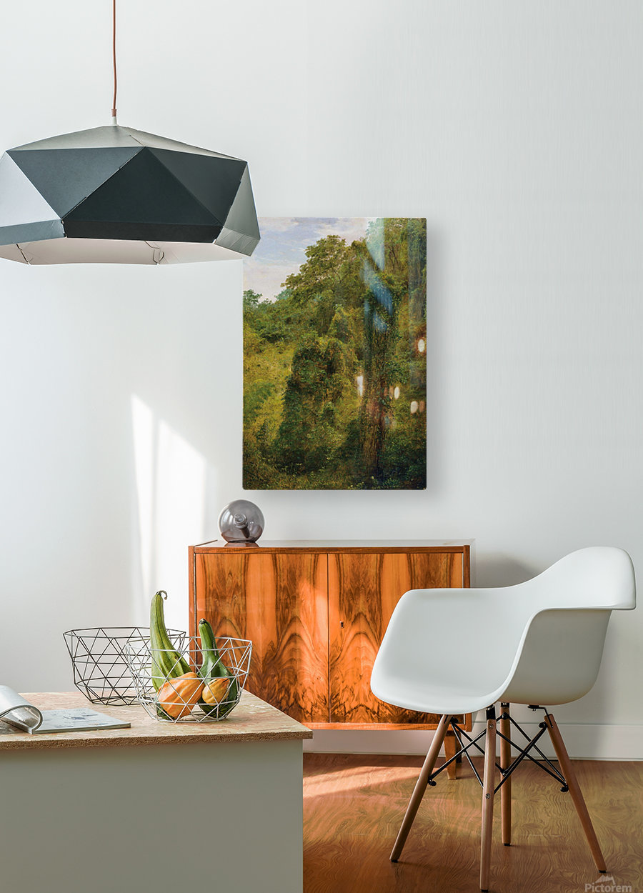 View of a forest in Jamaica  HD Metal print with Floating Frame on Back