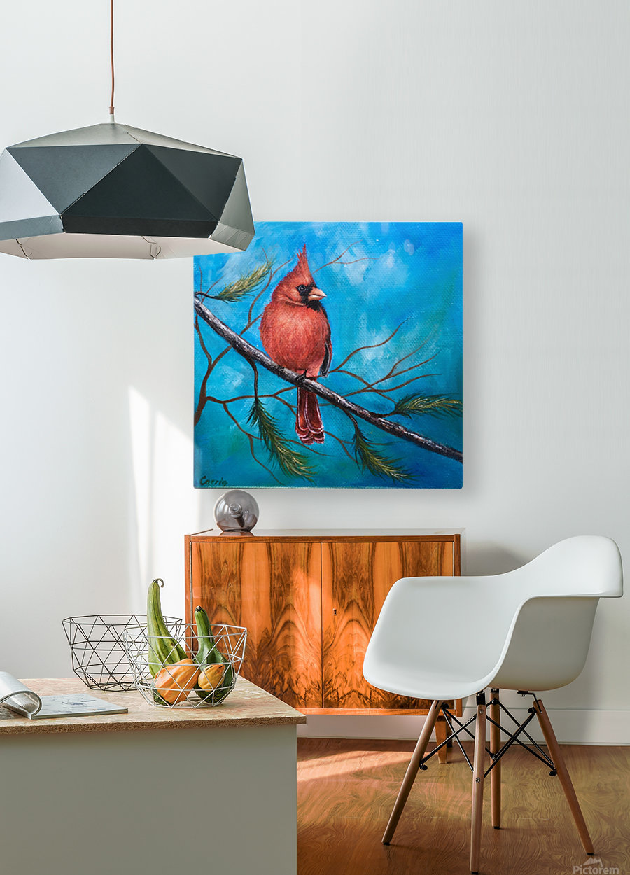 Mr. Cardinal  HD Metal print with Floating Frame on Back
