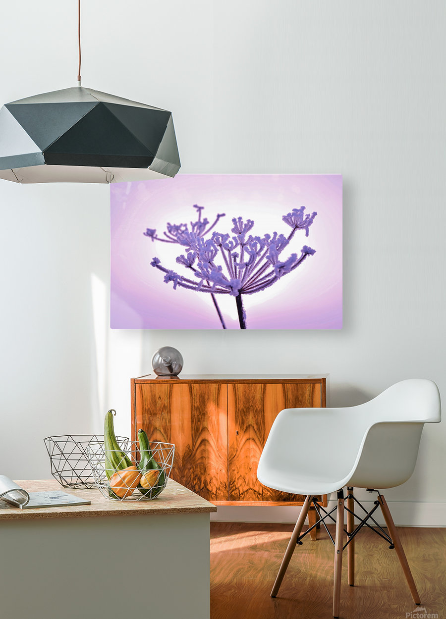Pink tint  HD Metal print with Floating Frame on Back