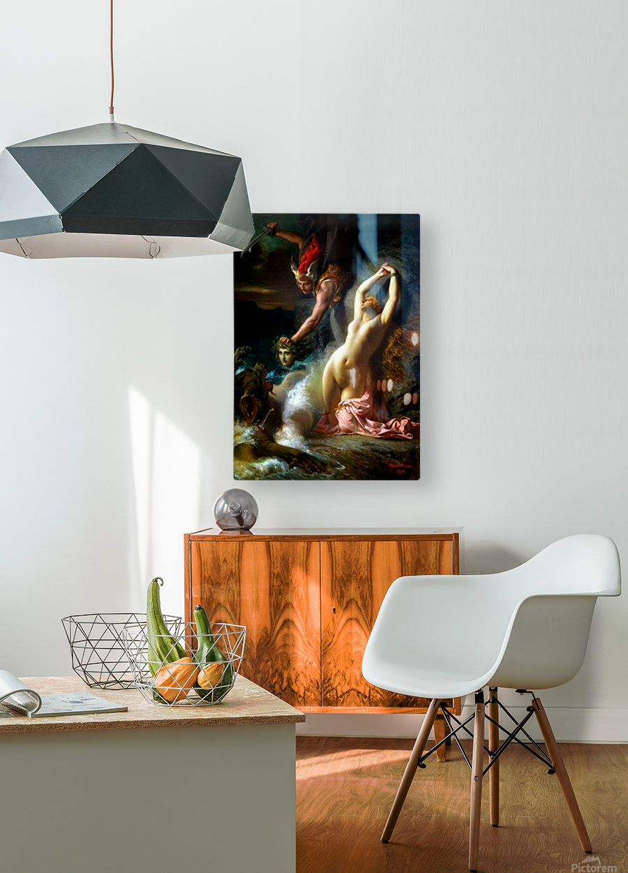 Andromeda chained to a rock  HD Metal print with Floating Frame on Back