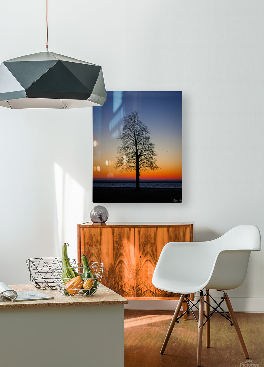 Trees IV  HD Metal print with Floating Frame on Back