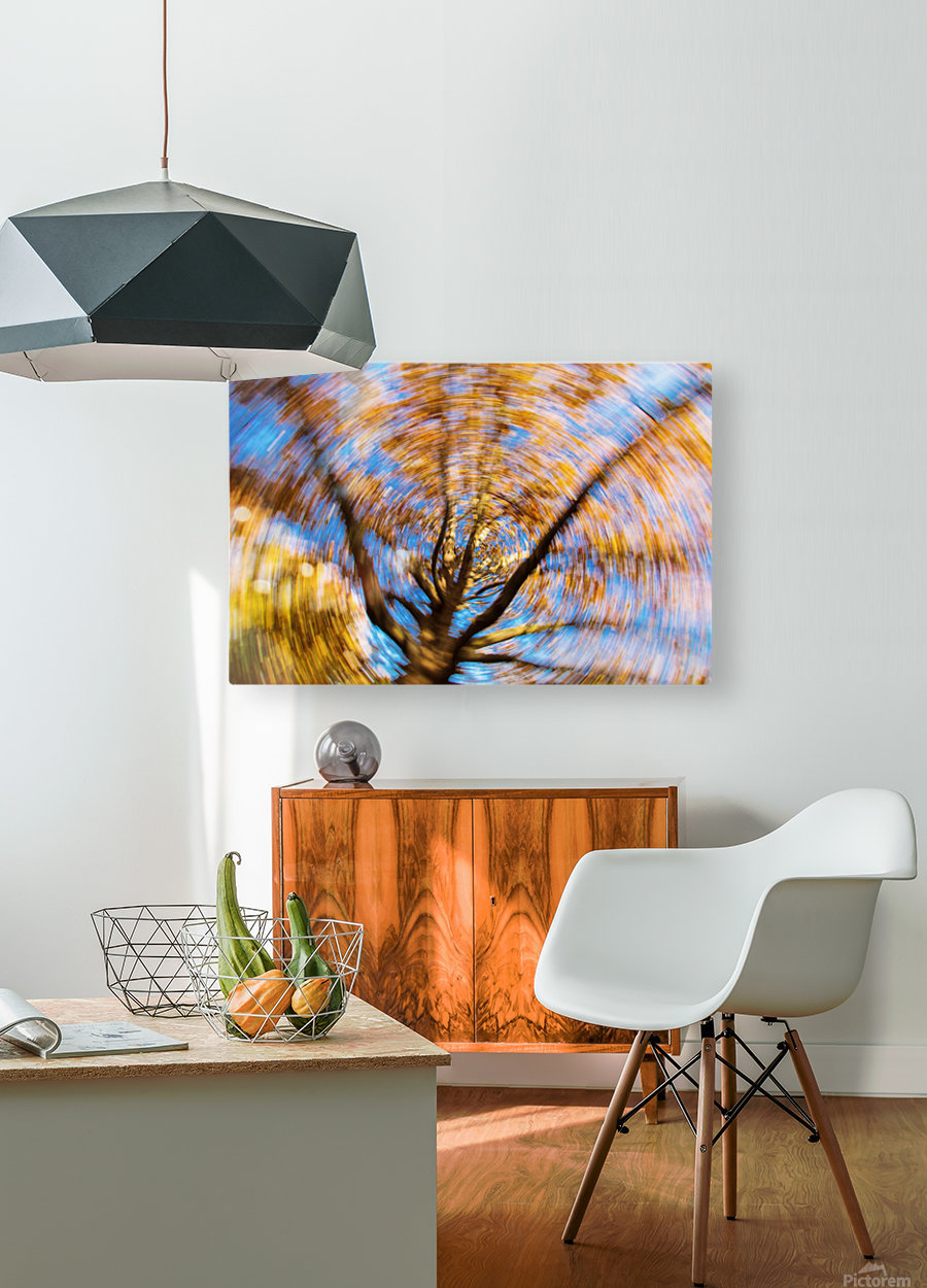 Autumn season in the middle of forest with colourful leaves  HD Metal print with Floating Frame on Back