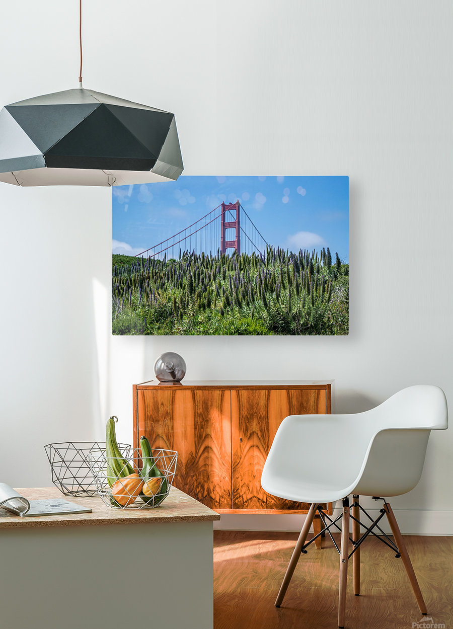 San Francisco Lupines  HD Metal print with Floating Frame on Back