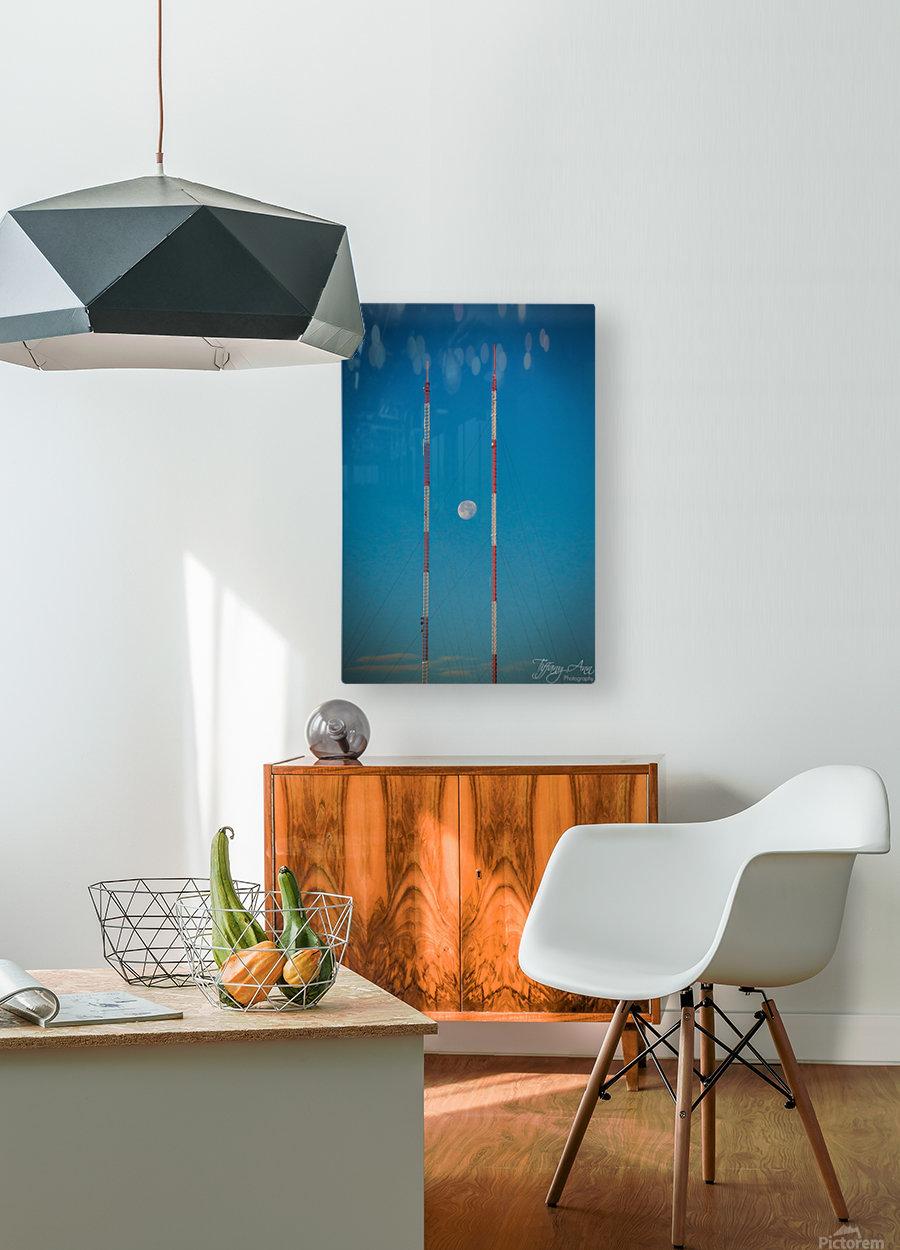 Chopsticks  HD Metal print with Floating Frame on Back