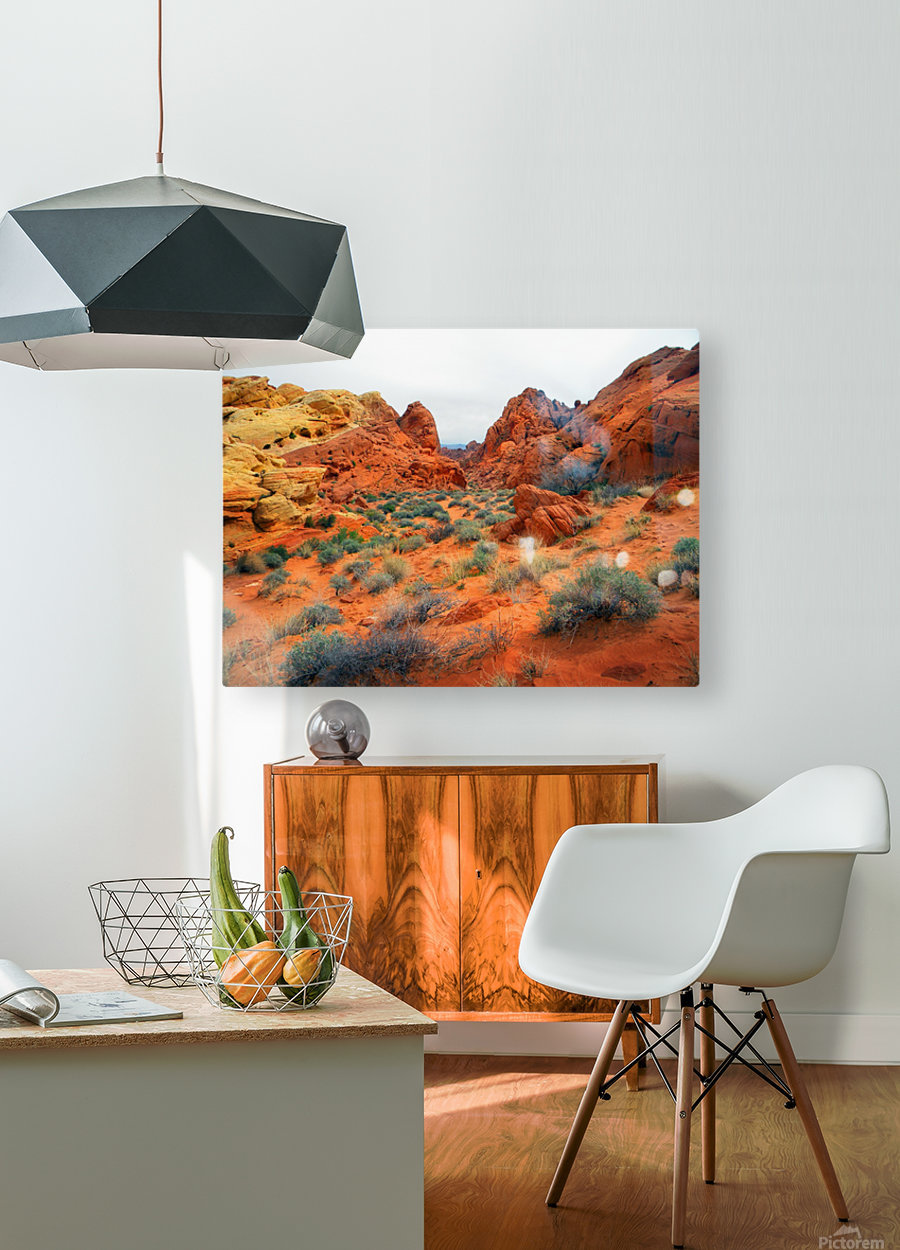 Desert Colors  HD Metal print with Floating Frame on Back