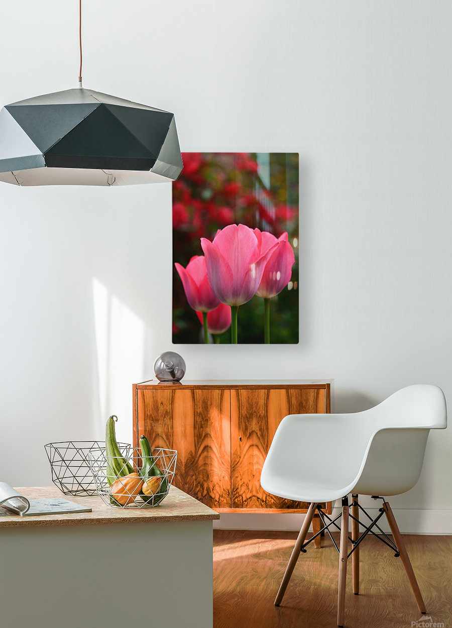 Pink queens  HD Metal print with Floating Frame on Back