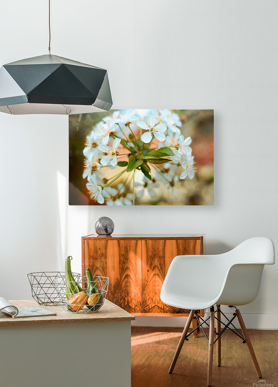 Spring hour  HD Metal print with Floating Frame on Back
